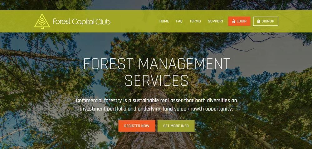 Forest Capital Club - хайп партизан с готовым дизайном