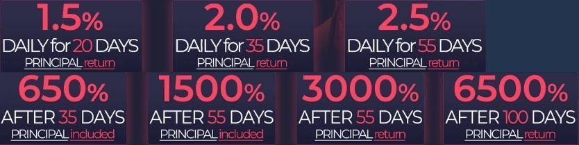 Инвестиционные планы ZetBull Limited