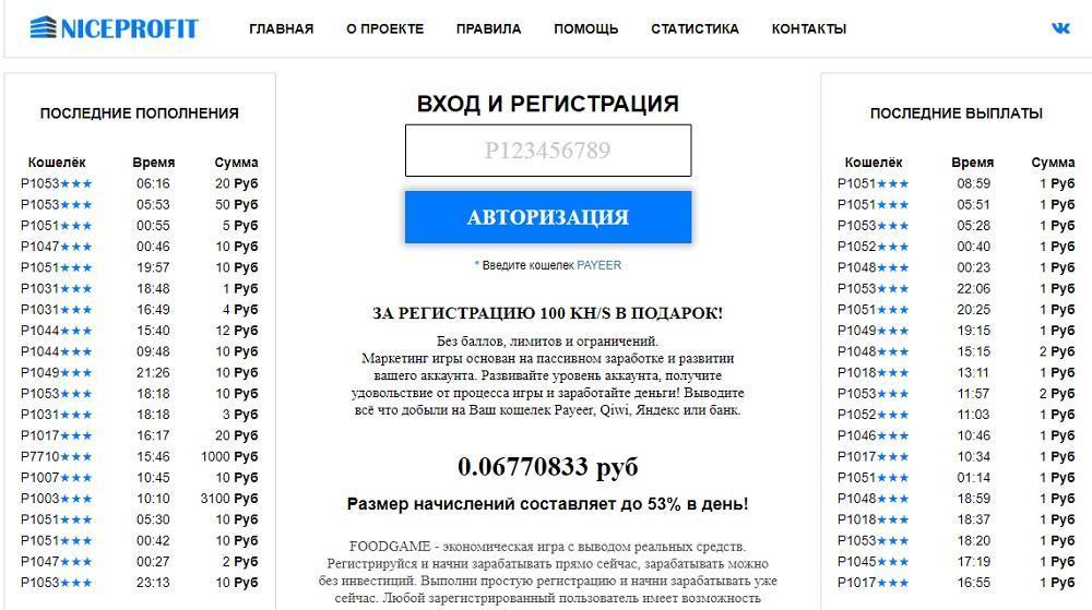 Niceprofit (niceprofit.ru) - высокодоходный проект или развод?