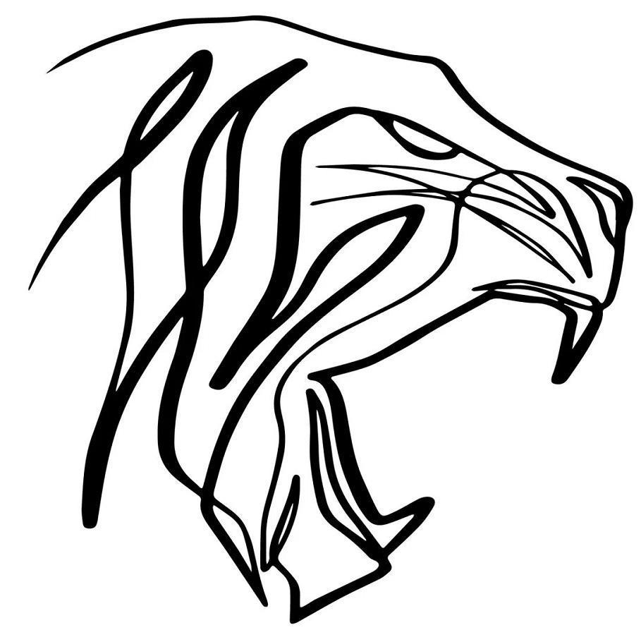 TigerLeads (еще одна команда арбитражников)